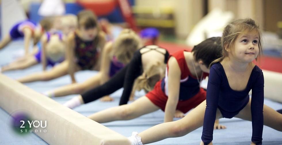 <h1>Приглашаем мальчиков и девочек для занятий спортивной гимнастикой!</h1> Тел. 72-09-76, 91-02-47